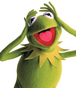 Kermit_exasperated